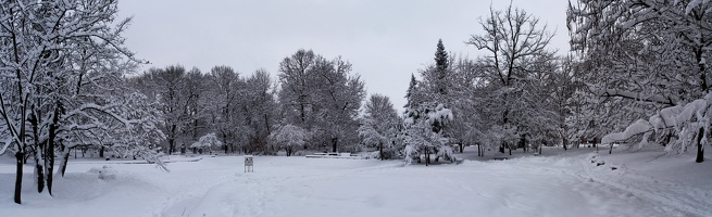 freedom garden pano winter 10
