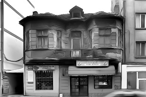 old.house.2008.01 as dream bw